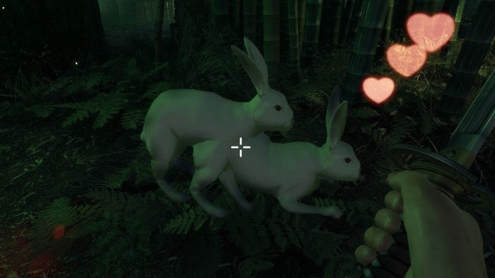 rabbit_sex